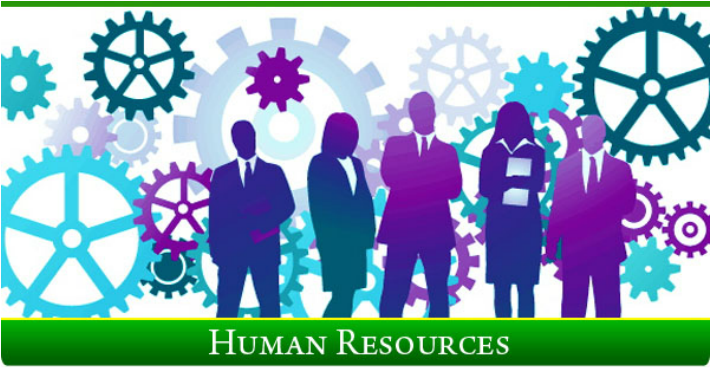 management skills in human resource development About human resources career development: skills are important for your desired career development read about career skills in the self-assessment.